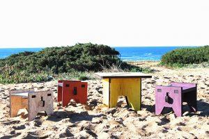 Valchromat_Projetos_Muzzle_Portugal 1