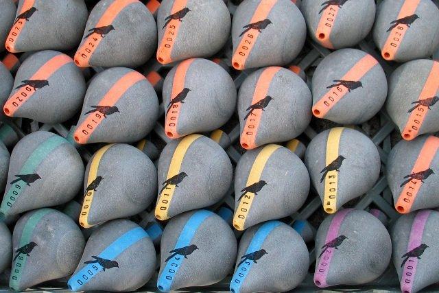 Valchromat_Projetos_Pião Cuco Toys_Portugal 5